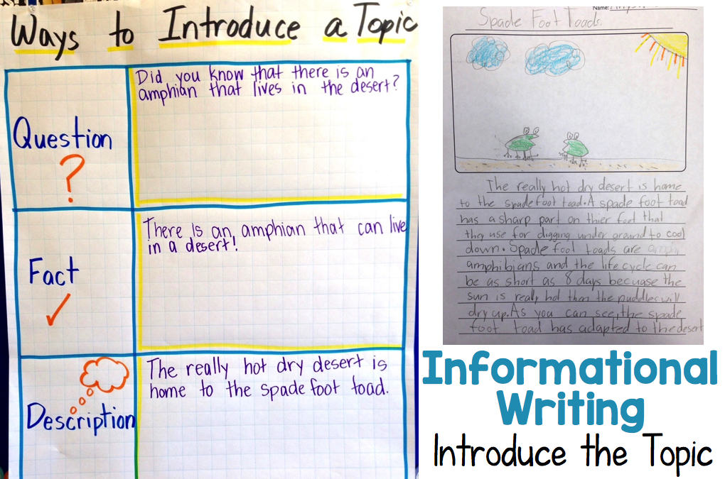 5th grade introduction paragraph examples