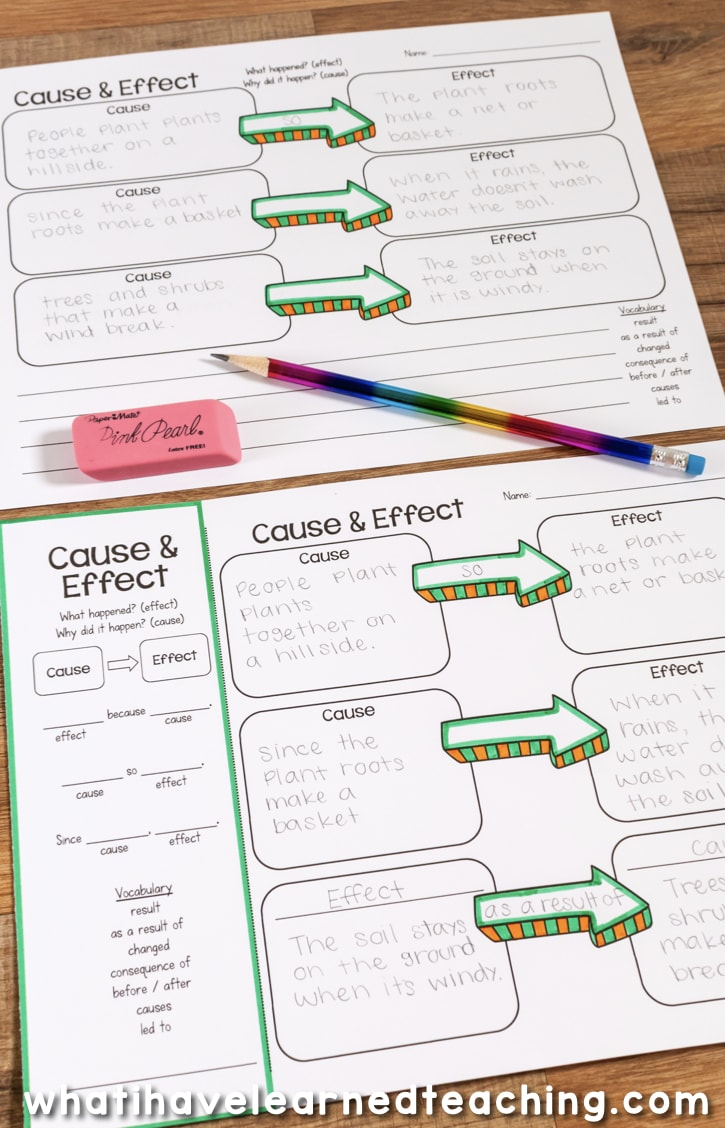 Graphic Organizers With Language Support