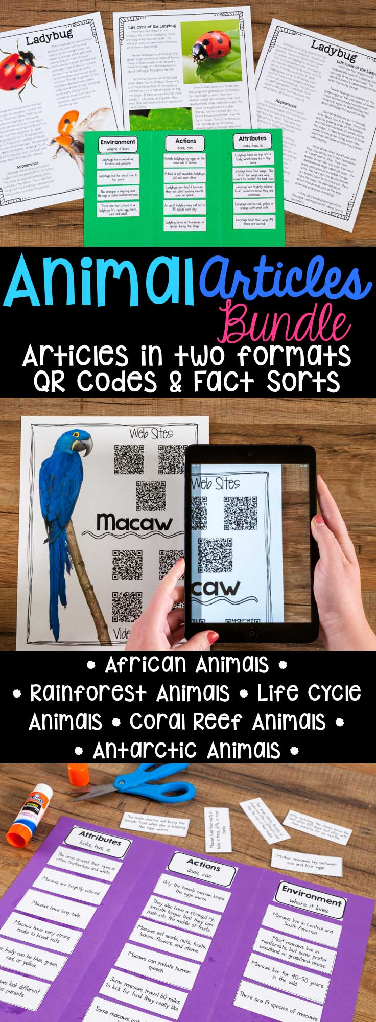 animal articles informational articles qr codes fact sorts animal articles informational article qr code research page fact sort is a bundle