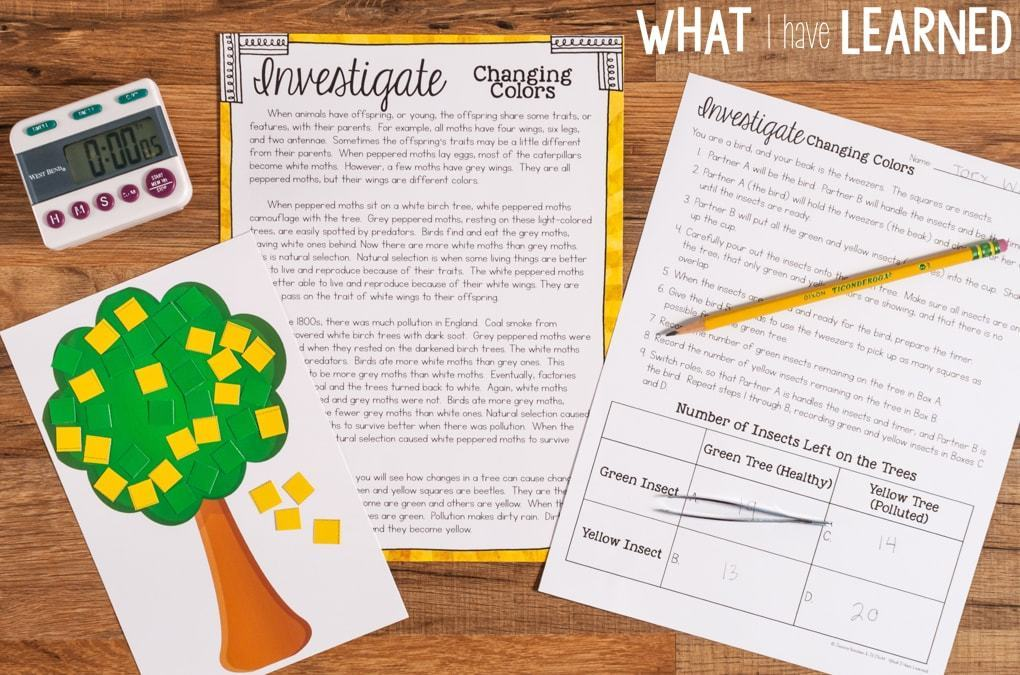 Third Grade Science Stations that follow the Next Generation Science Standards. For the Investigate station, students investigate the concept through an hands-on activity and then answer questions about the investigation.