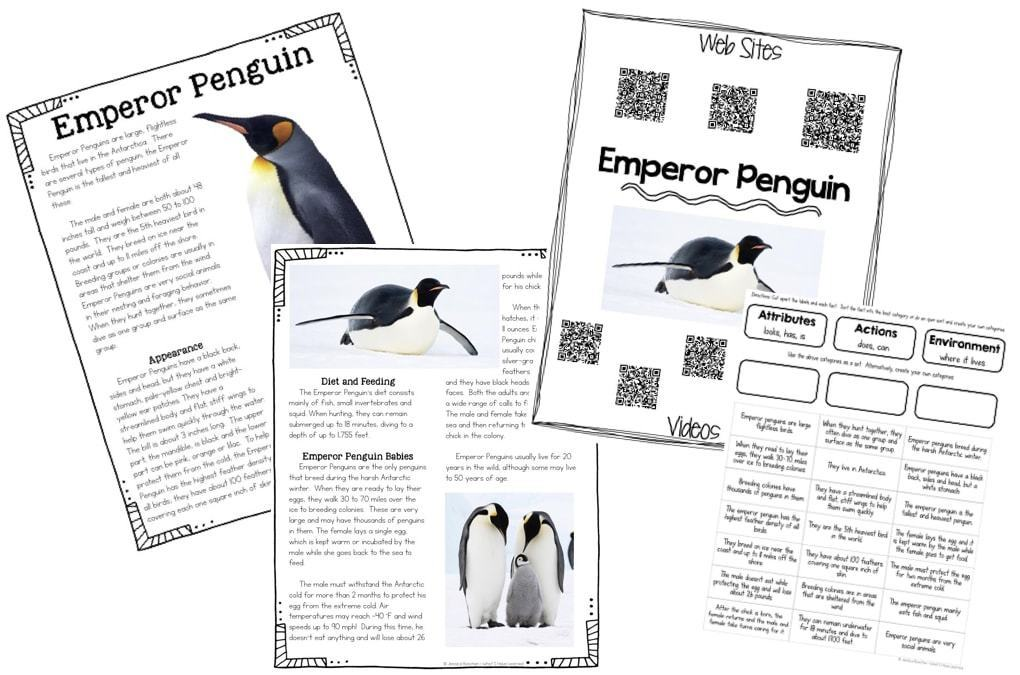 antarctic penguins paper In a paper released on march 2nd in the journal scientific reports, the scientists announced the discovery of a previously unknown supercolony of more than 1,500,000 adelie penguins in the danger islands, a chain of remote, rocky islands off of the antarctic peninsula's northern tip.