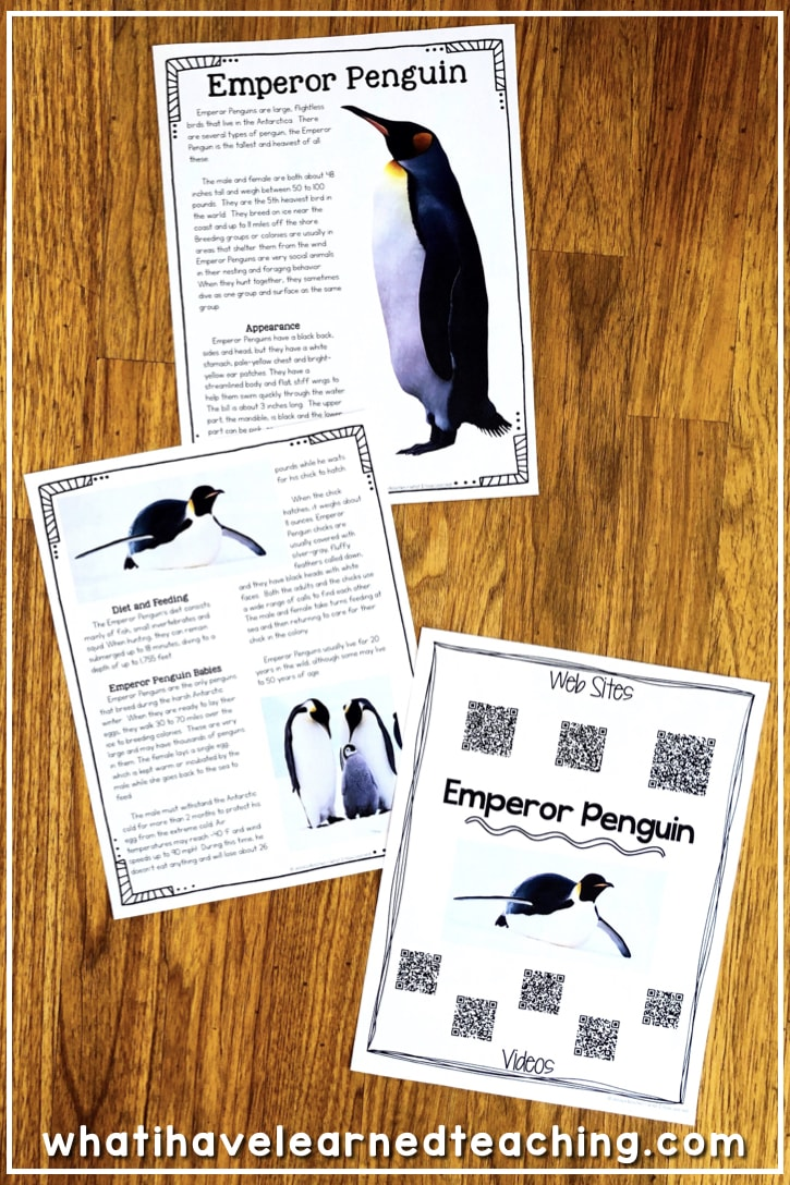 All About Penguins  Informational Reading And Writing For Winter Help Students Learn About The World Around Them And The Amazing Emperor  Penguin While Learn How How To Write A High School Application Essay also Health Essay Sample  Thesis Essay Example